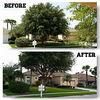 McClean Tree Service & Lawn Care